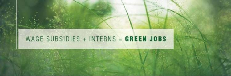 Wage Subsidies + Interns = Green Jobs