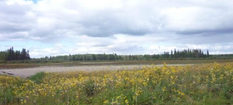 Peace River Country Photo