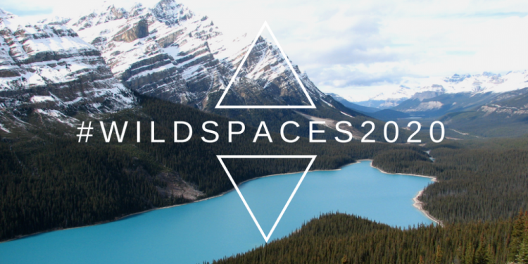 #WILDSPACES2020