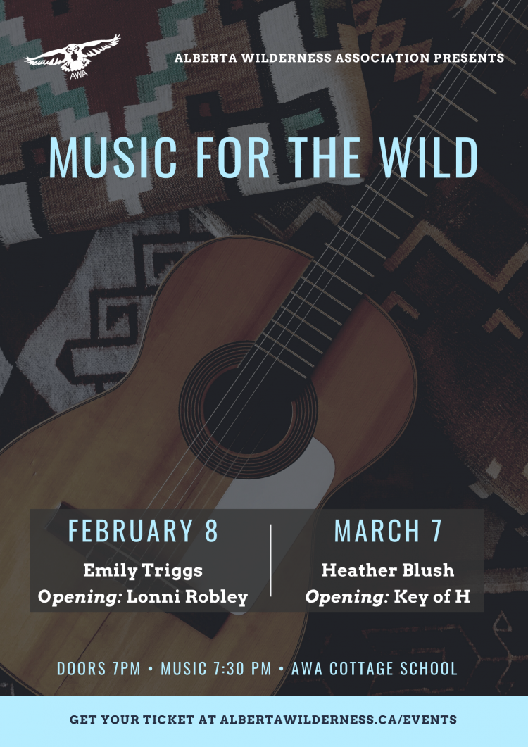 Music for the Wild Poster