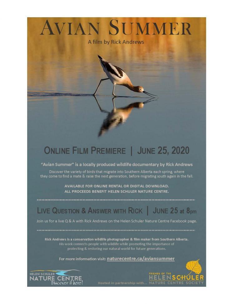 Avian Summer Premiere Poster