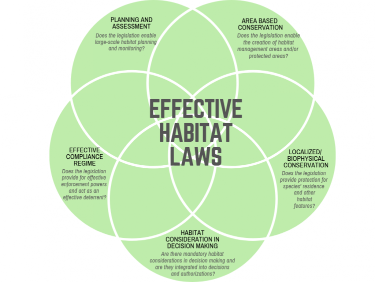 Effective Habitat Laws Diagram