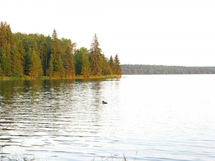 Kinnaird Lake, Lakeland Provincial Park
