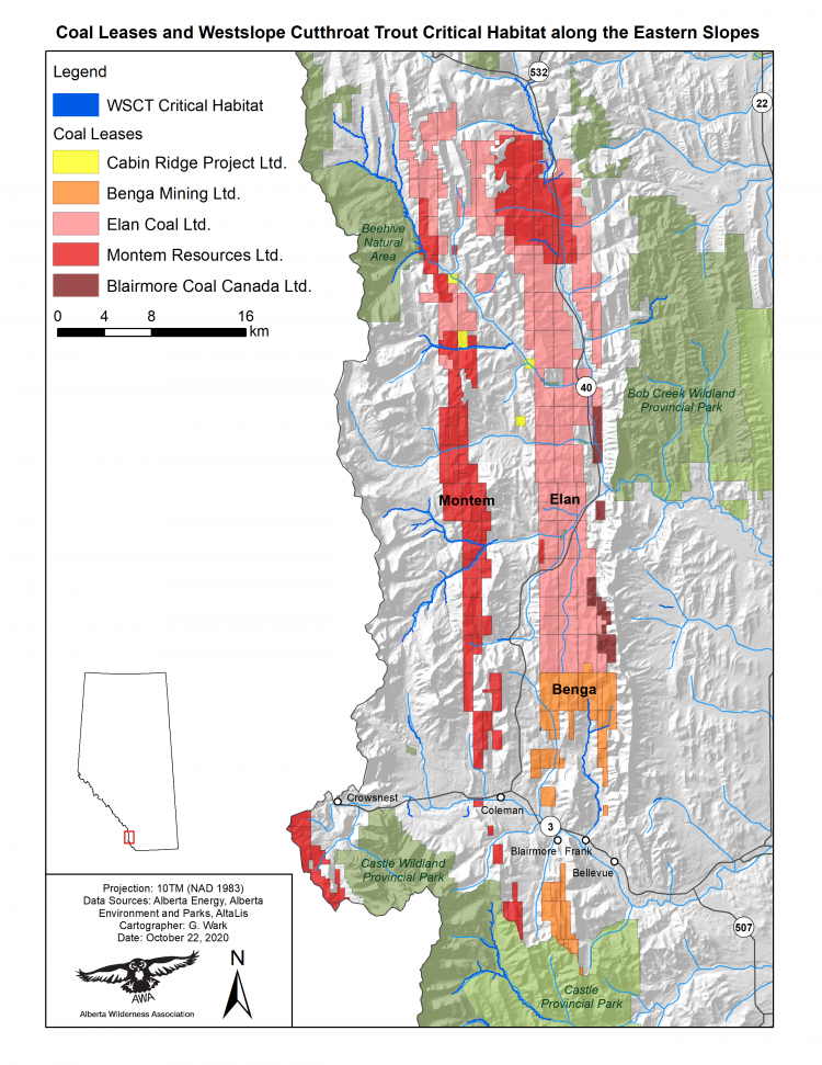 Map of Coal Leases and Critical Cutthroat Habitat along the Eastern Slopes
