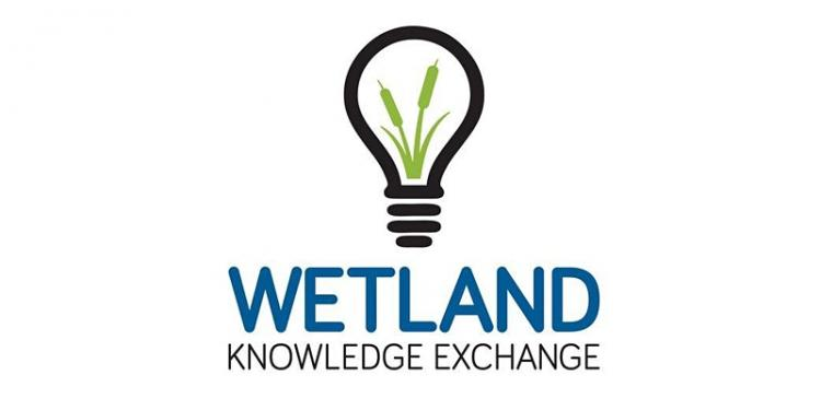 Wetland Knowledge Exchange Logo - a light bulb with a silhouette of green bullrushes within